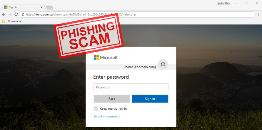 Online/Email Phishing Scams